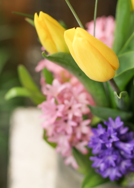 Spring, Flowers, Minnesota, Twin Cities, Florist, Floral, Flowers, Tulips, Shamrock, Clover, Saint Patrick's Day, Main Floral, Anoka, Coon Rapids, Champlin, Dayton, Area, Near, By, Blog, Best, Delivery, Gladiolas, Hyacinth, Lily