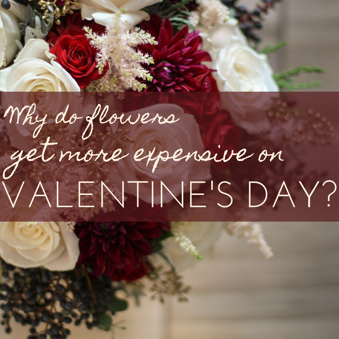 Valentine's Price Increases? Why? { Anoka Area Flower Delivery }